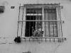 αγοράκι φυλακισμένο πίσω από τα κάγκελα στο παράθυρο του σπιτιού του