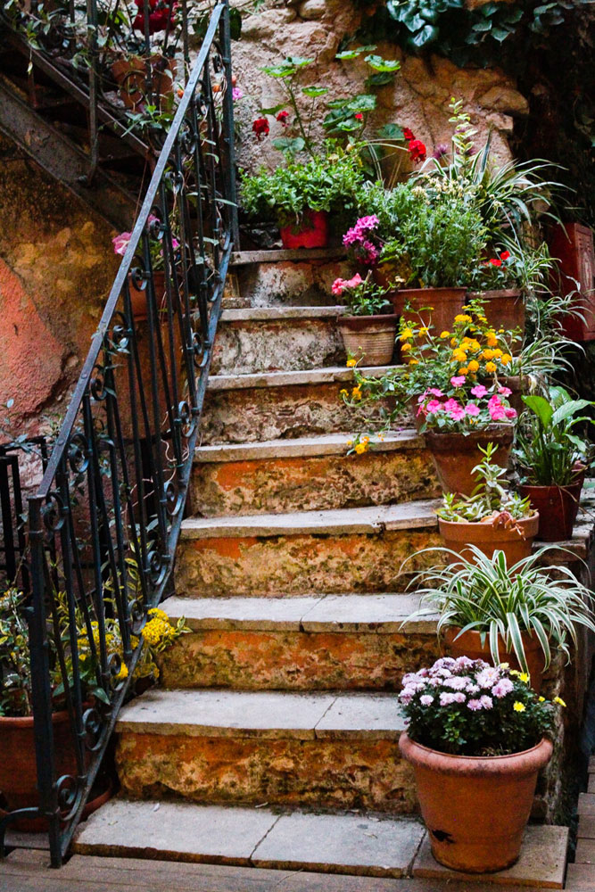 flowers-stairs